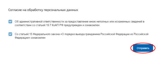 Отправка заявления онлайн на загранпаспорт