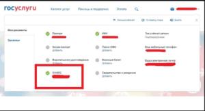 Проверка СНИЛС на портале Госуслуги шаг 3